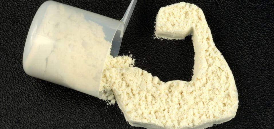 how to find the best protein powder