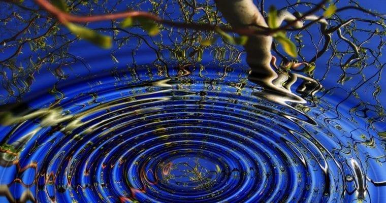 Creating A Garden Meditation Space