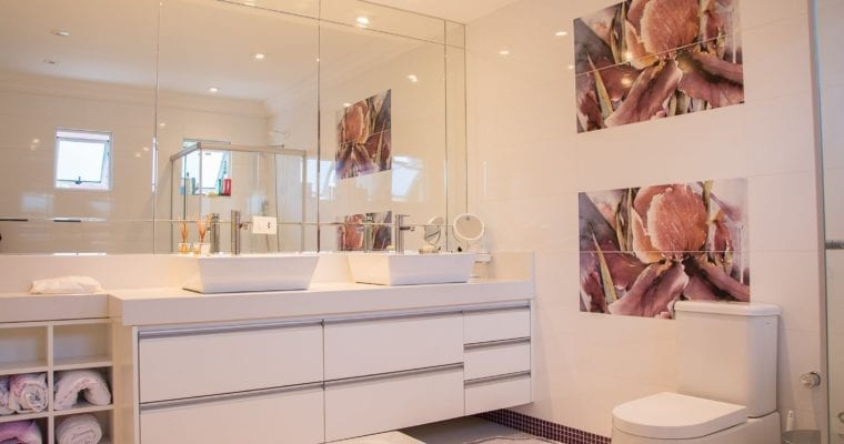 How to Choose the Best Toilet: A Buyer's Guide