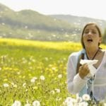 Five Greatest Australian Hay Fever Culprits