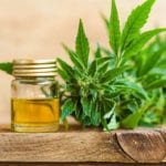 Obsessed With Depression? Try CBD Oil Right Away