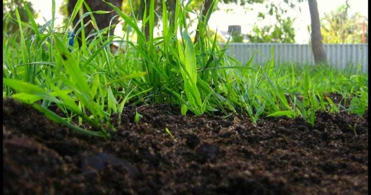 Natural composting is a new way of treating your plants in a great way