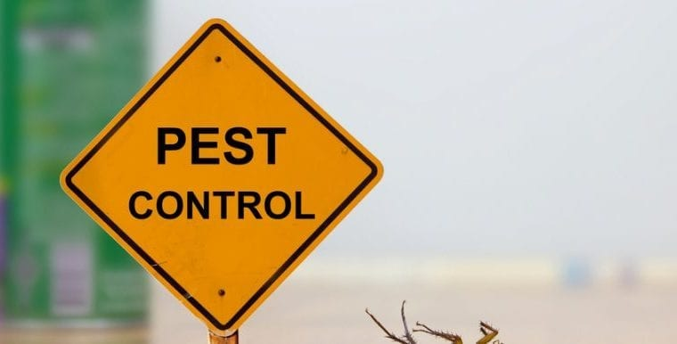 How Technology Is Changing Pest Control