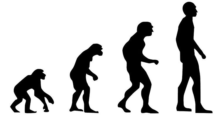 6 resources which show the evolution of the human body