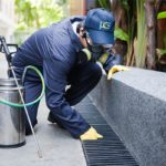 Tips for Selecting a Pest Control Company