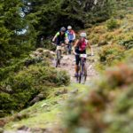 Can You Go Mountain Biking For Cheap? - What You Need & How Cheap It Can Be