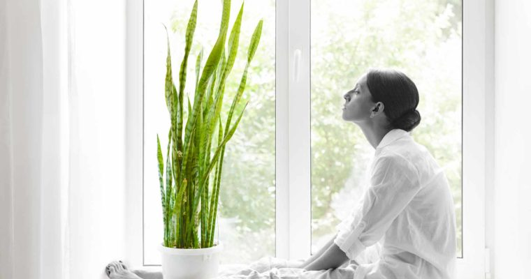 Air Quality At Home: How to Purify Air in 7 Ways