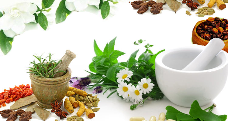ALL YOU NEED TO KNOW ABOUT HERBAL PRODUCTS