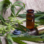 Top 5 CBD Essentials To Have In 2020