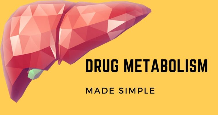 Drug Metabolism