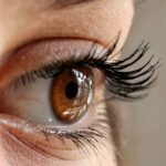 Clear Vision: How to Take Care of Your Eye Health