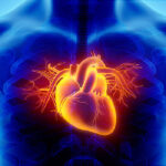 Signs You Need to See a Heart Disease Specialist for Treatment