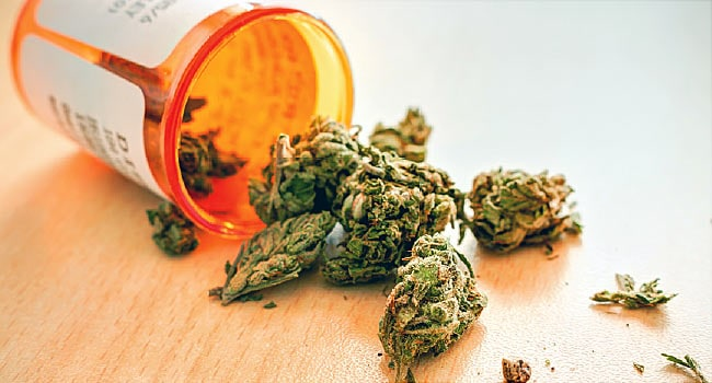Do You Know The Health Benefits Of Medical Weed? Know In Details Here!