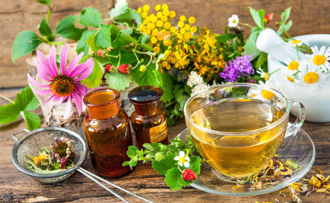 What Are The Most Therapeutical Teas?