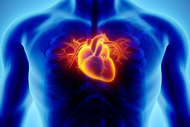 Obtain Accurate Diagnosis for Heart Conditions With Stress Testing