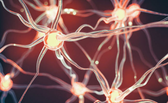 How to Treat Nerve Damage Effectively: A Basic Guide
